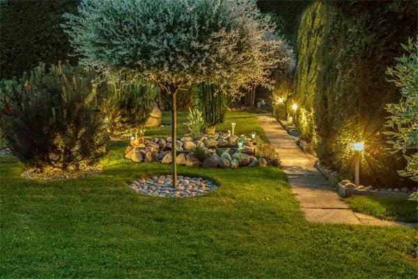 Khu vườn được trang trí với đèn.